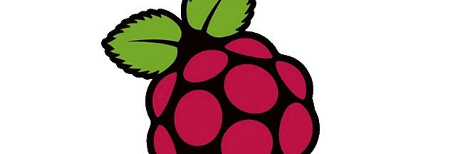 Raspberry-Pi-Logo-w650